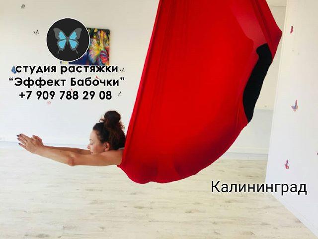 ?Fly Stretching или стрейчинг в гамаках в студии растяжки и стретчинга в Калининграде «Эффект Бабочки» — это прекрасное сочетание элементов воздушной гимнастики и растяжки. ⠀ ? Поможет не только вам почувствовать своё тело по-новому, но и посмотреть на мир вверх ногами, так же расслабиться и снять стресс. ⠀ ? Fly stretching развивает гибкость и ловкость, повышает мышечную силу и выносливость. ⠀ ? Подходит для любого уровня подготовленности, а также для тех людей, которые хотят сделать акцент на вытяжении позвоночника. ⠀ ? Есть бесплатные пробные занятия! ⠀ ⏩ Запись по телефону 8-909-788-29-08, пишите в Директ/Viber/WhatsApp или на нашем сайте www.mybutterfly39.ru ⠀ #растянемтело #эффективнаярастяжка #эффектбабочки #растяжкавгамаке #растяжкапозвоночника #растяжкавкалининграде #стретчингкалининград #стретчингвгамаке #сестьнашпагат #студияшпагата #хочунашпагат