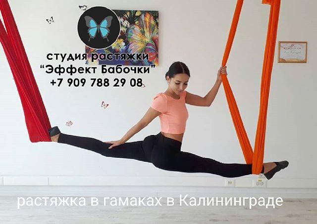 ? Приглашаем вас в студию растяжки и стретчинга в Калининграде «Эффект Бабочки» на занятия по растяжке в гамаке. ⠀ ? Вам предстоит заниматься в специальных гамаках для йоги в воздухе. Точно такие же используют на тренировках воздушные гимнасты. Гамак даёт телу возможность самостоятельно контролировать нагрузку, что обеспечивает безопасность тренировок. ⠀ ? Комплекс упражнений направлен на плавное растяжение мышц всего тела и укрепление связок и суставов. ⠀ ?А если вы мечтаете сесть на шпагат, курс растяжки в гамаке приблизит вас к вашей мечте. После тренировки вы будете чувствовать не усталость, а прилив сил. ⠀ ? До встречи в гамаке в профессиональной студии  растяжки в гамаках в Калининграде «Эффект Бабочки»! ? ⠀ ⏩ Запись по телефону 8-909-788-29-08, пишите в Директ/Viber/WhatsApp или на нашем сайте www.mybutterfly39.ru ⠀ #стретчингкалининград #стретчингдлядетей #стретчингвгамаке #студияшпагата #шпагат #шпагаткалининград #шпагатсесть #танцыкалининград #тренировкавгамаке #хочунашпагат #эффективнаярастяжка #эффектбабочки